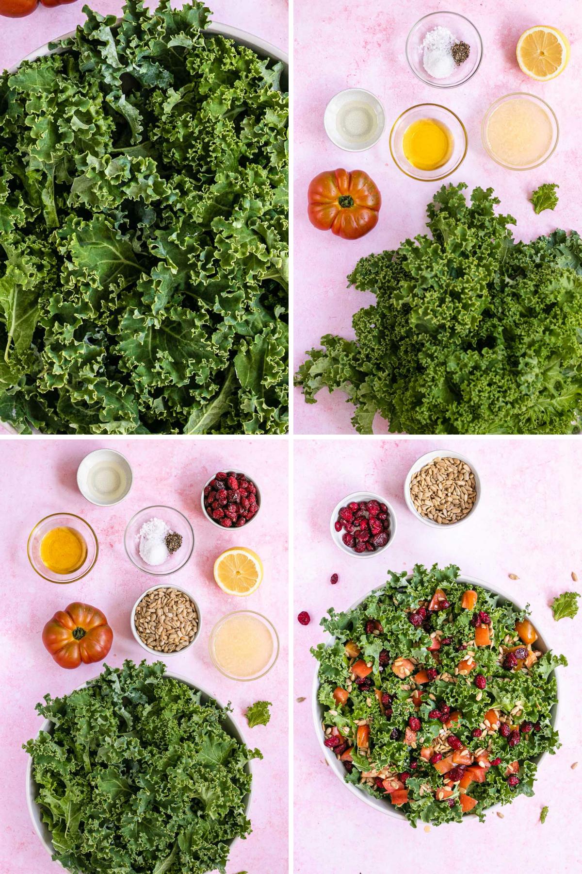 Kale Salad Collage of ingredients